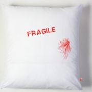 fragile copie