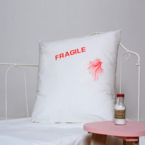 fragile4 copie