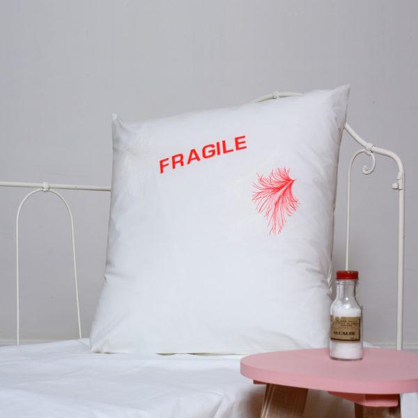 fragile4 copie